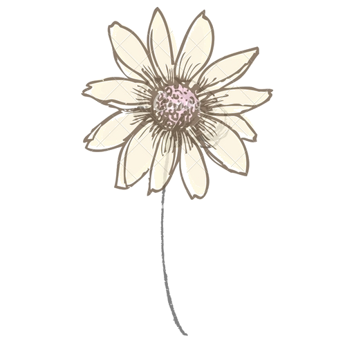 cropped-flower-transparent-1.png